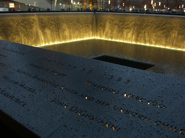 Watching the World Change: A Personal Account from 9/11, NewYork.